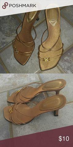 Sandal Wear couple time.. Good condition. vincci Shoes Sandals