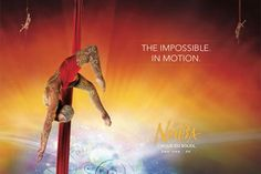 Buy discount tickets and offers for Cirque de Soleil, La Nouba with Cheap Deals, Cheap Tickets, Usa, Movies, Movie Posters, Stuff To Buy, Cirque Du Soleil, Films, Film Poster
