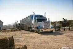 Star Western Cattle Truck   Western Star Trucks Gallery: Tough, Rugged Big Rig Semi Trucks