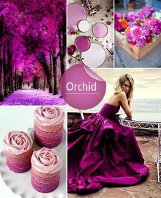 Shades of Orchid Wedding Colors Ideas for Spring 2014 Color Magenta, Orchid Color, Shades Of Purple, Spring Wedding Colors, Purple Wedding, Trendy Wedding, Dream Wedding, Orchid Wedding Colours, Wedding Color Schemes