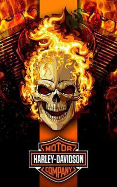 Cornhole Harley Davidson