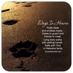 Dogs In Heaven - Fluffy beds and endless treats, gates to guard and friends to meet. Long slow walks with petting hands, safe with God in Heavens lands. | all-greatquotes.com #Heaven #Dogs #Poems