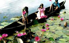 Kerala Backwaters Tour- Kerala is a state of south India. It has numerous tour and travel destinations. The Kerala backwaters very attractive and comprise as a chain of brackish lagoons and lakes lying parallel to the Arabian Sea line.