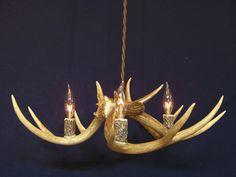 Antler chandeliers colorado share lighting pinterest antler chandeliers colorado share lighting pinterest chandeliers antler chandelier and sheds aloadofball Images