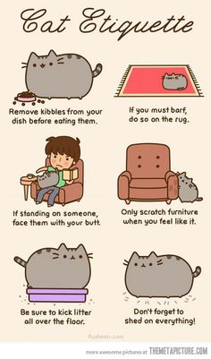 Pusheen´s Cat Etiquette by mandala - A Member of the Internet's Largest Humor Community Crazy Cat Lady, Crazy Cats, Chat Pusheen, Pusheen Book, Pusheen Gifts, Pusheen Stuff, The Bloodhound Gang, Kitten Baby, Catsu The Cat