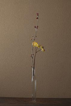 2012年4月4日(水)  三椏の花は光そのもの。春が来ると必ずいけたくなります。   花=男ようぞめ(オトコヨウゾメ)、三椏(みつまた)   器=古ガラス細瓶(20世紀)