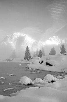 Winter Grey   Winter Gray