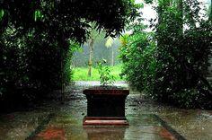 Monsoon tour packages to Kerala  Kerala tourism   travel Kerala   visit passiontourism.com