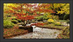 Elegant Japanischer Garten Augsburg im Oktober Pinterest Augsburg and Garten