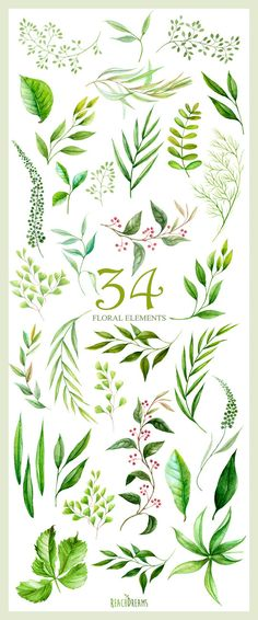 Floral Elements leaves foliage herbs wedding by ReachDreams