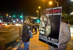 14 Protest Against The Safari Club Trophy Hunt Auction At The Mandalay Bay Ideas Trophy Hunting Mandalay Bay Safari