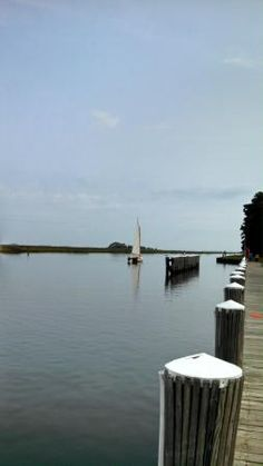 Photos of Janes Island State Park, Crisfield - Attraction Images - TripAdvisor MD