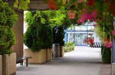 Ako nákupné centrum Avion znižuje vizuálny smog? - Akčné ženy Sidewalk, Side Walkway, Walkway, Walkways, Pavement