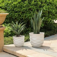 Kayu Wavy Design White MgO Planters by Havenside Home (Handmade - White - Planters - Fiberstone - Assembled - Modern & Contemporary - No - White Planters, Large Planters, Patio Planters, Modern Planters, Plastic Planter, Planter Boxes, Indoor Garden, Home And Garden, Pot Plante