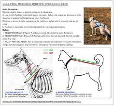 Speedog - Equipamiento perros deporte, trabajo, competición, canicross, y actividades al aire con perros