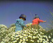 Esplorare le dune in fiore nel mese di maggio