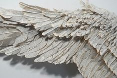 """paper bird: Susan Hannon's lyrical, ten-foot wide sculptures of """"wings"""" are crafted out of abandoned Bibles, giving new life to books invested with emotion and courting more than a bit of controversy for the artist:"""
