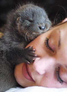 otter kisses.