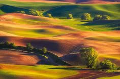 The Palouse is a region of the northwestern United States, encompassing parts of southeastern Washington, north central Idaho and, in some definitions, extending south into northeast Oregon.
