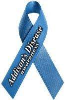 Addison's Disease Awareness Ribbon Magnet [M-LR-ADD] - $2.99 : Magnet America Store, High Quality Car Magnets, Decals, Patriotic Products, Awareness Products, Promotional Products and more, Made in the USA