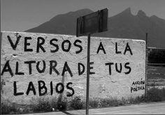 Acción Poética Oficial (México)