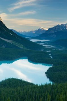 Sunrise over Peyto lake, Banff National Park Alberta Canada I need a cabin here