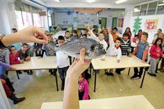 Los pediatras alertan de un próximo aumento de diabetes tipo 2 en niños | El Mundo | 12 mar 2013