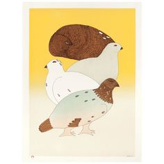 2013 Cape Dorset Print Collection at Alaska on Madison