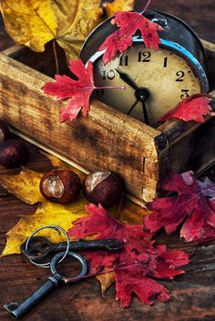 DIY Autumn ~ add foliage, nuts, old clock to weathered wood box for easy decor