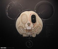 MickeyMouseSceleton