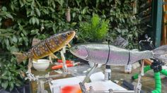 Trout lures custom painting.