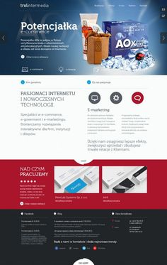 trol intermedia interactive agency and internet software house - Best website, web design inspiration showcase