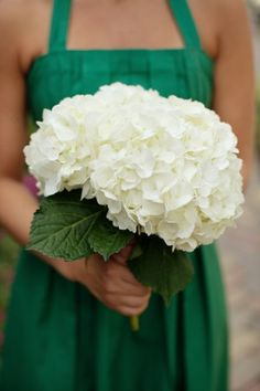 emerald green bridesmaid dresses and simple creamy white hydrangea bouquets. All White Wedding, White Wedding Bouquets, Flower Bouquet Wedding, Bridesmaid Bouquet, Bridesmaids, Irish Wedding, Bridal Bouquets, White Hydrangea Bouquet, Hortensia Hydrangea