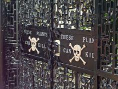 Conoce el extraño jardín envenenado del Castillo de Alnwick