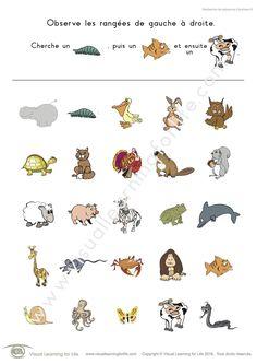 Dans les fiches de travail « Recherche de séquence d'animaux » l'élève doit trouver tous les animaux dans une séquence identique à celle figurant en haut de la page.