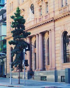 Apple Store Brisbane #apple #applestore #brisbane #vscocam #vscomania #canoneos100d #eos100d #travelgram #wanderlust #architecture #australianarchitecture #travel #shopping