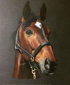 Very nice horse art by 👉🏼 @snowdonbonny 👈🏼 #horse #horseart #equineart #horses #equine #equestrian #horselove #horsesofinstagram #horsepainting #horsedrawing #horsesketch #equineartist #horseartist #myhorse