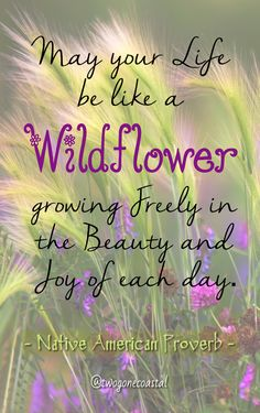 May your life be like a wildflower, growing freely in the beauty and joy of each day. - Native American Proverb