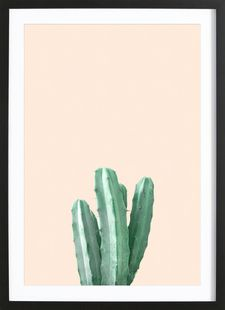 Pink Cactus - Christoph Abatzis - Ingelijste poster