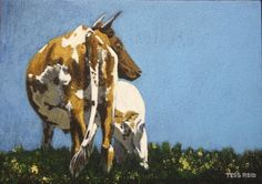 Acrylic Nguni Cow paintings by Tess Reid's Fine Art Cow Painting, Moose Art, Paintings, Watercolor, Fine Art, Animals, Cow Wall Art, Pen And Wash, Watercolor Painting