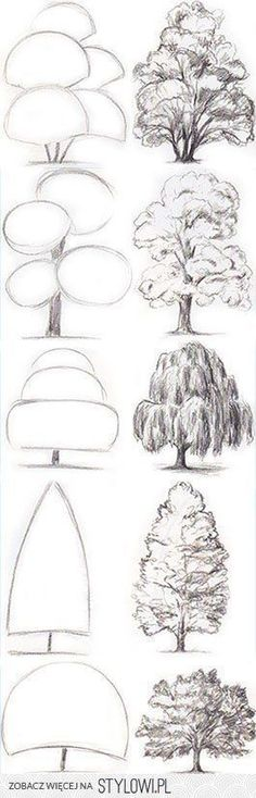 Drawing Tips Tree Drawing Tutorial. Start with basic geometric shapes. Pencil Art Drawings, Art Drawings Sketches, Drawing Lips, Drawing With Pencil, Easy Sketches To Draw, How To Sketch, Things To Sketch, Basic Sketching, Drawing Designs