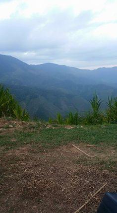 > #Jaraguenses envían hermosas vistas de las partes altas de Villa Jaragua