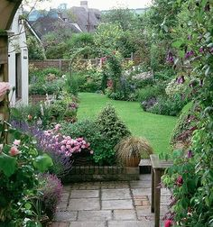 Terrace and established borders