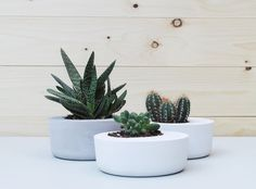 This is price for a set of 3 concrete planters! Modern decorative accessory for your home ideal for succulents and cacti. //Concrete planter
