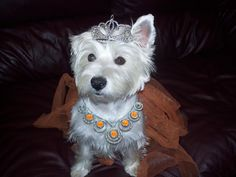 Dressed as a princess for halloween.