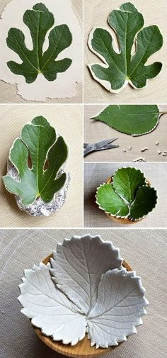 Step by step way of making clay leaves, this will help me with making a clay teapot as my topic I have picked is tropical plants/leaves/flowers. The shapes used in the first leaf are very fluent slopes and curves compared with the other leaf that has distinct spikes. The leaves have vibrant shades and tones of green that stand out highlighting the picture of the leaves.