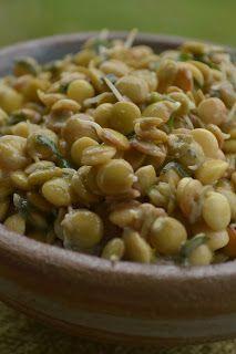 Salada de lentilha germinada