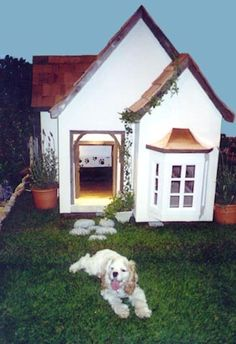 Hahaha!  Not that my dogs are ever outside, but this is a NICE custom dog house?!!?
