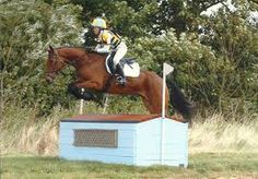 belton horse trials 2014 cross country