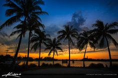 Beautiful sunset at Dubois Park with coconut trees and a view of the Jupiter Lighthouse. HDR image tone mapped using EasyHDR software.